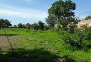 Foto de terreno habitacional en venta en  , paseo de tonala, tonalá, jalisco, 13903324 No. 01