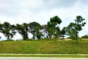 Foto de terreno habitacional en venta en paseo del valle 722, el palomar secc jockey club, tlajomulco de zúñiga, jalisco, 0 No. 01