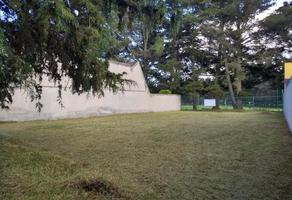Foto de terreno habitacional en venta en paseo santa teresa 701, san carlos, metepec, méxico, 0 No. 01