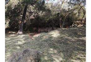 Foto de terreno habitacional en venta en paseo uxmal , la cañada, cuernavaca, morelos, 12164730 No. 01
