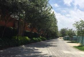 Foto de terreno habitacional en venta en paseo valle real , valle real, zapopan, jalisco, 13776331 No. 06