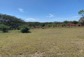 Foto de terreno habitacional en venta en paseos de las orquideas , aguajitos, comala, colima, 14724034 No. 01
