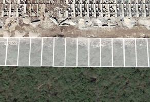 Foto de terreno habitacional en venta en  , paseos de opichen, mérida, yucatán, 6493528 No. 01