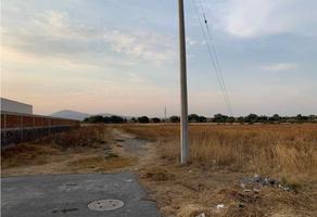 Foto de terreno habitacional en venta en  , paseos del lago, zumpango, méxico, 20377098 No. 01