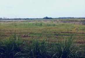 Foto de terreno habitacional en venta en  , paso del toro, medellín, veracruz de ignacio de la llave, 17552210 No. 01