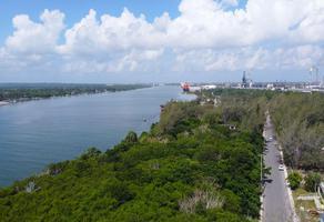 Foto de terreno comercial en venta en paso doña cecilia , la barra, ciudad madero, tamaulipas, 21567764 No. 01
