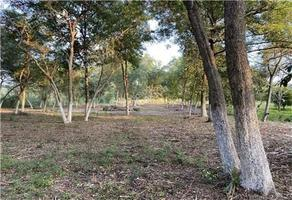 Foto de terreno habitacional en venta en  , paso hondo, allende, nuevo león, 18569343 No. 01