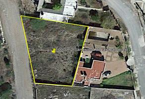 Foto de terreno habitacional en venta en pavorreal , san isidro, arteaga, coahuila de zaragoza, 0 No. 01