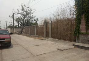 Foto de terreno habitacional en venta en  , pazulco, yecapixtla, morelos, 6947411 No. 01
