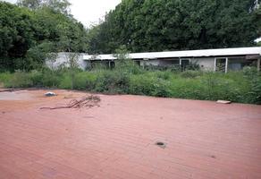 Foto de terreno habitacional en venta en pedernal , jardines del pedregal, álvaro obregón, df / cdmx, 0 No. 01