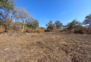 Foto de terreno habitacional en venta en  , pedregal de las fuentes, jiutepec, morelos, 17885188 No. 01