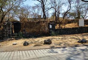 Foto de terreno habitacional en venta en pedregal , las fuentes, jiutepec, morelos, 0 No. 02