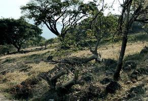 Foto de terreno habitacional en venta en pedregal , pedregal de san miguel, tlajomulco de zúñiga, jalisco, 4646358 No. 01