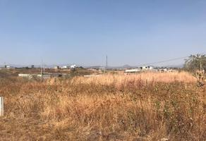 Foto de terreno habitacional en venta en  , pedregal tlalli, tlayacapan, morelos, 0 No. 01