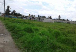 Foto de terreno habitacional en venta en pedro ascencio , san mateo otzacatipan, toluca, méxico, 0 No. 01