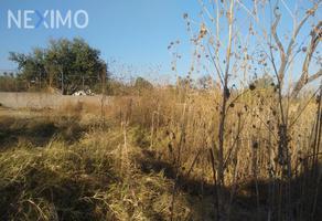 Foto de terreno industrial en venta en pedro moreno 404, el mirador, tonalá, jalisco, 6592769 No. 01