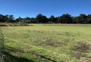 Foto de terreno habitacional en venta en pedro moreño , santo tomas ajusco, tlalpan, df / cdmx, 0 No. 01