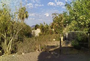 Foto de terreno habitacional en venta en pelicanos , miramar, loreto, baja california sur, 0 No. 01