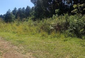 Foto de terreno habitacional en venta en peña blanca , peña blanca, valle de bravo, méxico, 5860343 No. 01