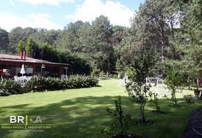 Foto de rancho en venta en  , peña blanca, valle de bravo, méxico, 16714727 No. 01