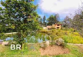 Foto de casa en venta en  , peña blanca, valle de bravo, méxico, 19234891 No. 01
