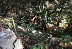 Foto de terreno habitacional en venta en  , peña blanca, valle de bravo, méxico, 19402509 No. 01