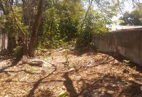 Foto de terreno habitacional en renta en  , pensiones, mérida, yucatán, 12860017 No. 02