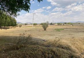 Foto de terreno habitacional en venta en  , pentecostés, texcoco, méxico, 0 No. 01