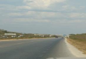 Foto de terreno comercial en venta en periférico , jalapa, mérida, yucatán, 0 No. 01