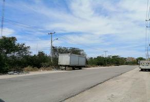 Foto de terreno habitacional en venta en periferico , kanasin, kanasín, yucatán, 0 No. 02