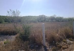 Foto de terreno comercial en venta en  , pesquería, pesquería, nuevo león, 13868426 No. 01