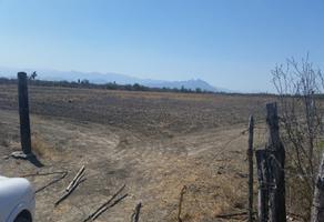 Foto de terreno industrial en venta en  , pesquería, pesquería, nuevo león, 17372761 No. 01