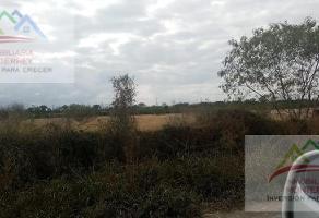 Foto de terreno habitacional en venta en  , pesquería, pesquería, nuevo león, 17591334 No. 01