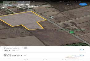 Foto de terreno habitacional en venta en  , pesquería, pesquería, nuevo león, 17591338 No. 01