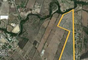 Foto de terreno habitacional en venta en  , pesquería, pesquería, nuevo león, 17620389 No. 01