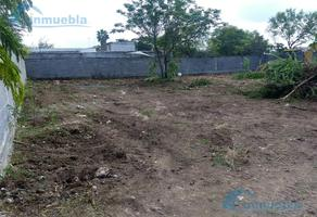 Foto de terreno habitacional en renta en  , pesquería, pesquería, nuevo león, 0 No. 01