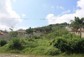 Foto de terreno habitacional en venta en petirrojo 41, balcones de la calera, tlajomulco de zúñiga, jalisco, 0 No. 01