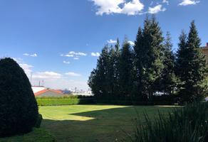 Foto de departamento en renta en pico de verapaz , lomas del pedregal framboyanes, tlalpan, df / cdmx, 0 No. 01