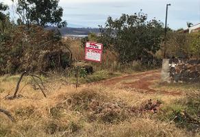 Foto de terreno habitacional en venta en piedra amarilla , acatic, acatic, jalisco, 6535524 No. 01