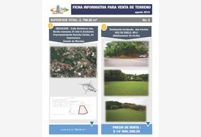 Foto de terreno habitacional en venta en pino 29, rancho cortes, cuernavaca, morelos, 16916353 No. 03
