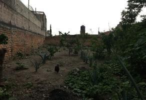 Foto de terreno habitacional en venta en pino , alameda, tlajomulco de zúñiga, jalisco, 6072816 No. 01