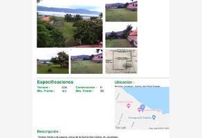 Foto de terreno comercial en venta en pino suárez 116, san pedro tesistán, jocotepec, jalisco, 0 No. 01