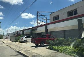 Foto de local en renta en  , pinos norte ii, mérida, yucatán, 14259907 No. 01