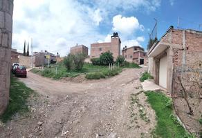 Foto de terreno habitacional en venta en pinos , yerbabuena, guanajuato, guanajuato, 0 No. 01