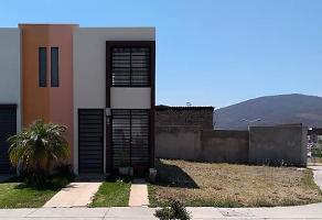 Foto de casa en renta en pinoso 301, las víboras (fraccionamiento valle de las flores), tlajomulco de zúñiga, jalisco, 12344888 No. 02