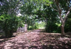 Foto de terreno comercial en venta en piramide calle xx, izamal, izamal, yucatán, 11516526 No. 01