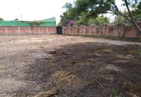 Foto de terreno habitacional en venta en piramide y moises ulloa ( yautepec ) , rancho nuevo, yautepec, morelos, 16880990 No. 01