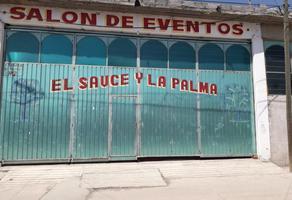 Foto de bodega en renta en pirul 1, san mateo nopala, naucalpan de juárez, méxico, 17482429 No. 01