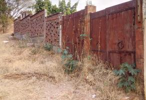 Foto de terreno habitacional en venta en pivada tepehuaje , tetela del monte, cuernavaca, morelos, 0 No. 01