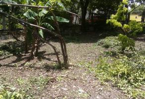 Foto de terreno habitacional en venta en  , plan de ayala, ciudad valles, san luis potosí, 0 No. 01